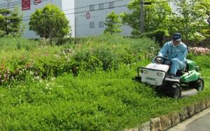 小型搭乗式草刈り機